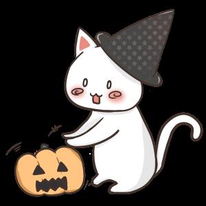 かぼちゃにじゃれる猫のイラスト