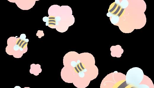 【装飾】ミツバチ