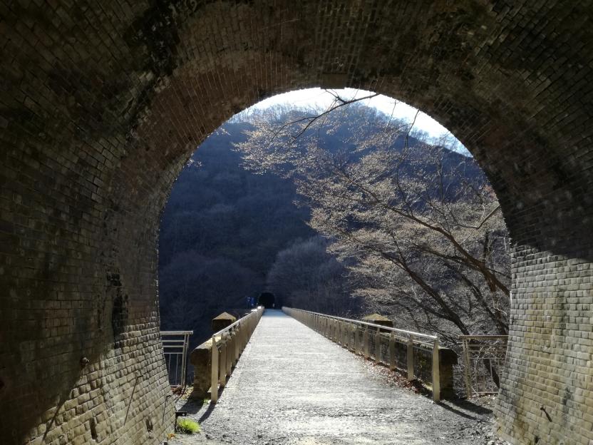 トンネルを抜ける瞬間の写真